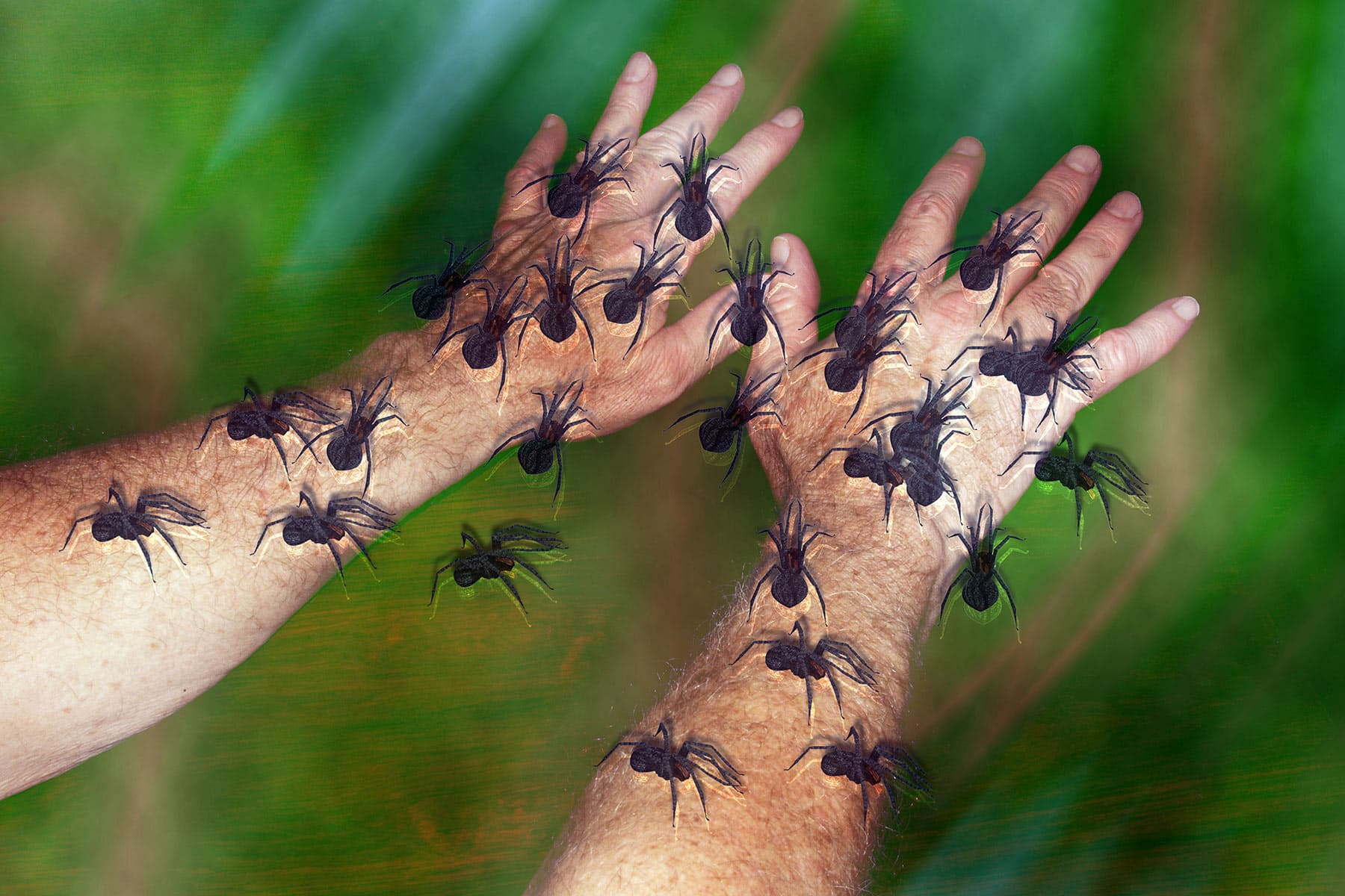 photo of tactile hallucination with spiders